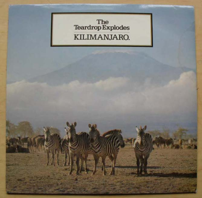 Teardrop Explodes Kilimanjaro Records Lps Vinyl And Cds