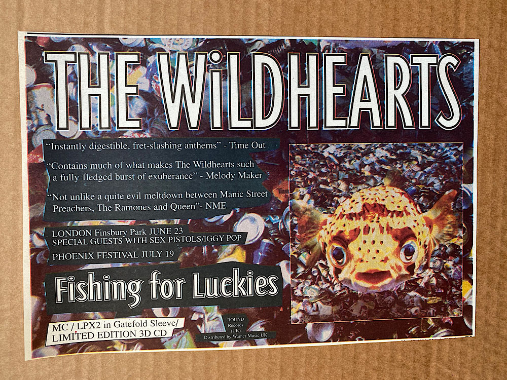 WILDHEARTS - FISHING FOR LUCKIES - Autres